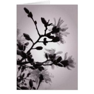 Asian Inspired Magnolia Card