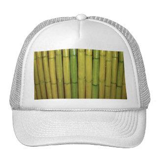 Asian Zen Green Bamboo Stalks Botanical Photo Cap
