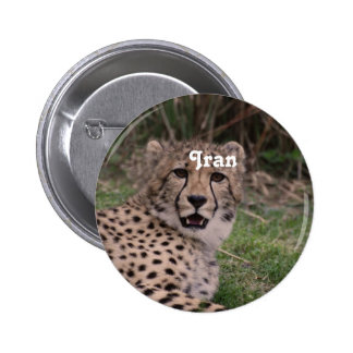 Asiatic Cheetah Pins