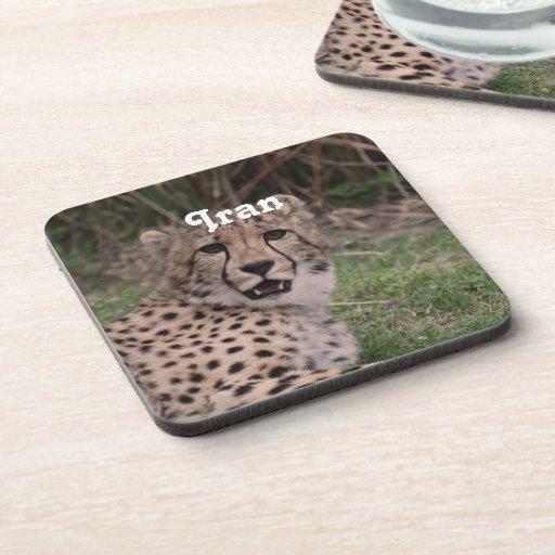 Asiatic Cheetah Drink Coaster