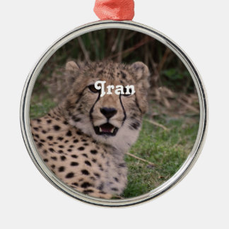 Asiatic Cheetah Ornament
