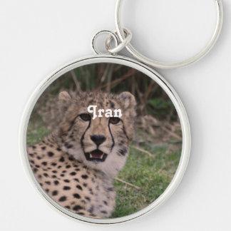 Asiatic Cheetah Key Chains