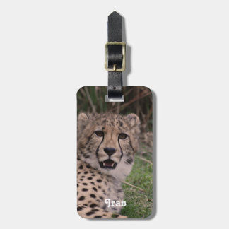 Asiatic Cheetah Tags For Bags