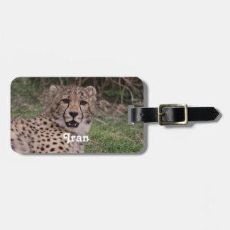 Asiatic Cheetah Travel Bag Tags