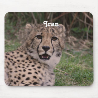 Asiatic Cheetah Mouse Pads