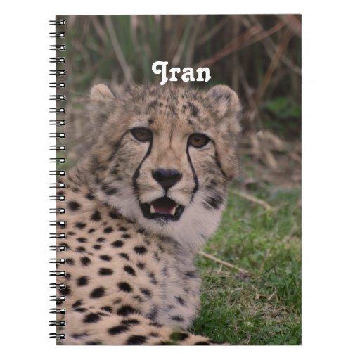 Asiatic Cheetah Journal