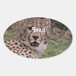 Asiatic Cheetah Oval Sticker