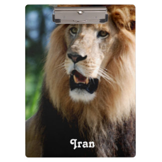 Asiatic Lion of Iran Clipboard