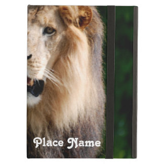 Asiatic Lion of Iran Cover For iPad Air