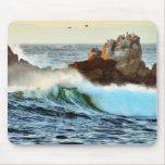 Asilomar Beaches Waves Ocean Dusk Mousepads