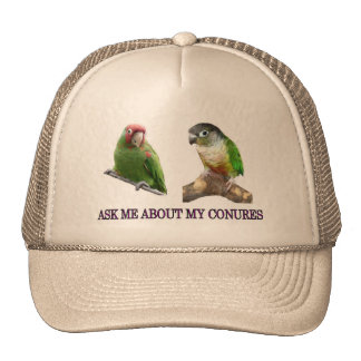 Ask Me About My Conures Cap