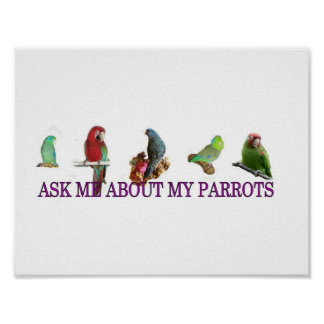 Ask Me About My Parrots Poster
