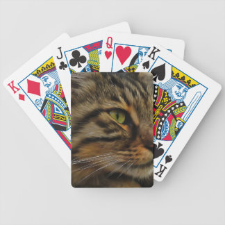 Aslan The Long Haired Tabby Cat Bicycle Playing Cards