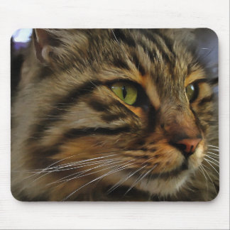 Aslan The Long Haired Tabby Cat Mouse Pad
