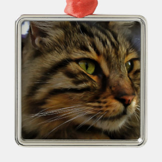 Aslan The Long Haired Tabby Cat Silver-Colored Square Decoration