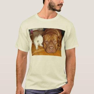 aspca boxer kitten pals T-Shirt