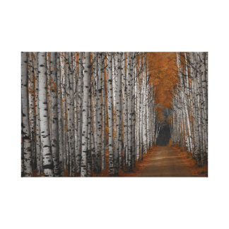 Aspen Alley Wyoming in Fall Canvas Print