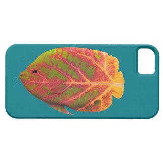 Aspen Leaf Tropical Fish 1 iPhone 5 Cases