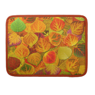 Aspen Leaves Collage Solid Medley 1 Sleeve For MacBooks