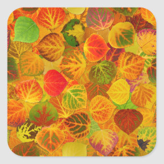 Aspen Leaves collage solid medley seamless 1 Square Sticker