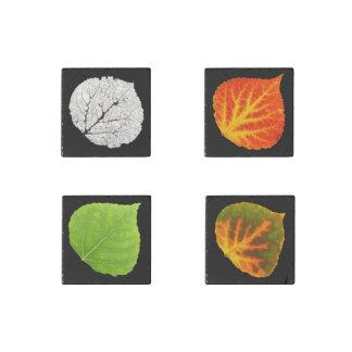 Aspen Leaves Medley Stone Magnet