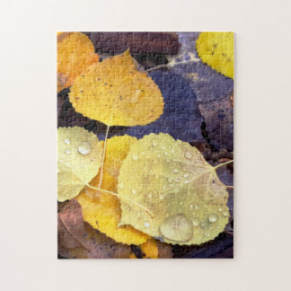 Aspen Leaves Puzzle
