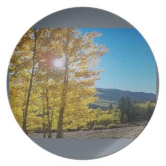 Aspen on a plate