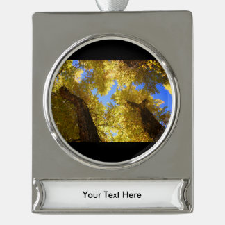 aspen silver plated banner ornament