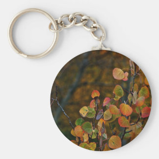 ASPEN TREE BRANCHES WITH FALL COLORED LEAVES KEY RING