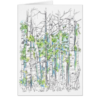 Aspen Tree Grove Ink Drawing Blank Card