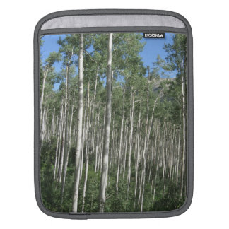 Aspen Tree Ipad Cover Sleeve For iPads