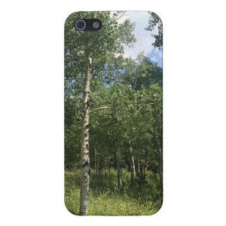 Aspen tree valley Case. iPhone 5 Cases