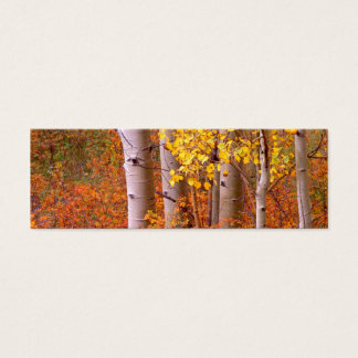 Aspen trees in Autumn Mini Business Card