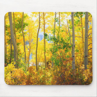 Aspen Trees In Fall | Sierra Nevada Mountains, CA Mouse Pad