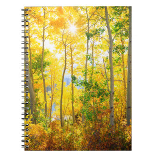 Aspen Trees In Fall | Sierra Nevada Mountains, CA Notebook