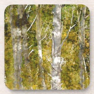 Aspen Trees in the Fall Beverage Coaster