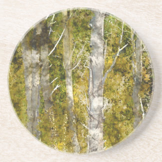Aspen Trees in the Fall Drink Coasters