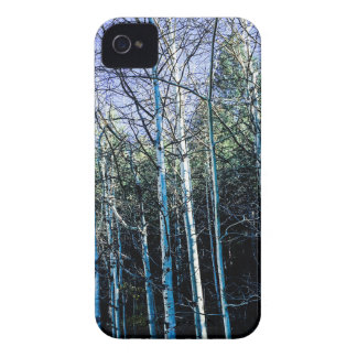 Aspen trees in the fall iPhone 4 Case-Mate case