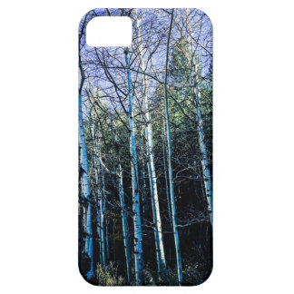Aspen trees in the fall iPhone 5 case