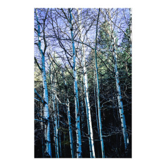 Aspen trees in the fall stationery