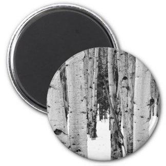 Aspens 6 Cm Round Magnet