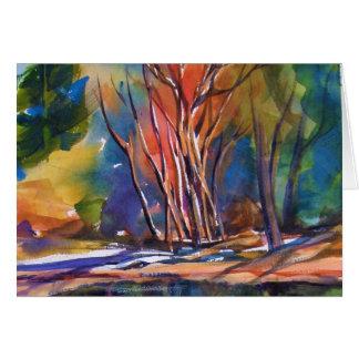 Aspens and Shadows of Yosemite CARD