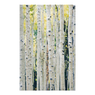 Aspens Forest - Painted Stationery