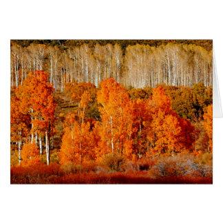 Aspens Kolob Zion NP Utah Blank Greeting Card