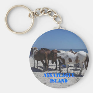 Assateague Island Ponies Key Ring