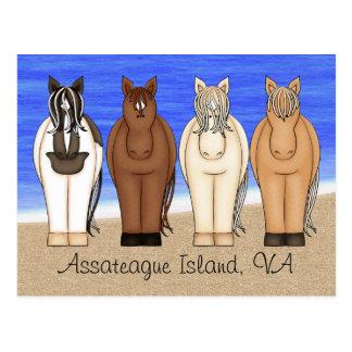 Assateague Island VA Chincoteague Ponies Postcard