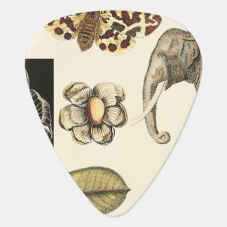 Assorted Animals Painted on Cream Background Plectrum