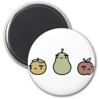 Assorted Fruit Refrigerator Magnets