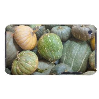 Assorted pumpkins Case-Mate iPod touch case
