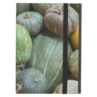 Assorted pumpkins iPad air cover